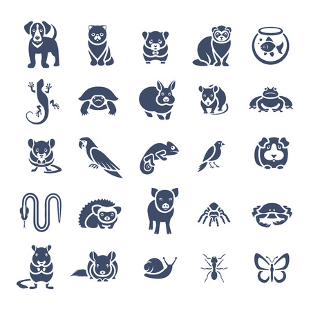 Animals pets vector flat silhouette icons set. Monochrome  pictograms of various domestic animals. Mammals, rodents, amphibian, insects, birds, reptiles, which people take care of at home