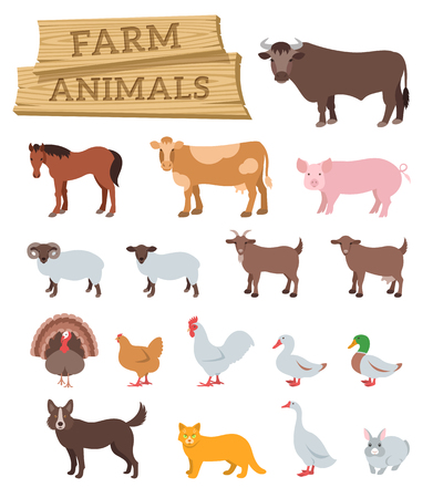 Illustration for Domestic farm animals flat vector icons set. Colorful illustrations of large and small cattle, domestic birds and pets. Farming  infographic elements. Cartoon educational clip art. Isolated on white - Royalty Free Image