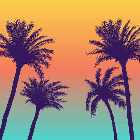 Illustration for Silhouette palm coconut trees background - Royalty Free Image