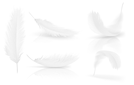 Ilustración de Realistic 3d white bird feathers set. Symbol of lightness, innocence, hope and heaven. Various shapes of Angel or bird detailed feathers. Vector isolated illustration on a white background. - Imagen libre de derechos