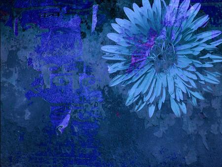 Grunge Flower Wall Background