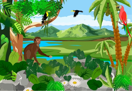 Illustration pour Monkey sitting on stone, birds on tree branches, jungle, wildlife and nature theme illustration - image libre de droit