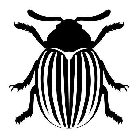 Illustration pour Vector image of the Colorado beetle silhouette on a white background - image libre de droit