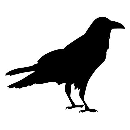 Illustration pour Vector image of a silhouette of a raven on a white background - image libre de droit