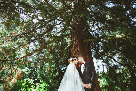Foto de Wedding photo shooting. Bridegroom and bride standing under tree. Holding hand of each other with closed eyes. Outdoor, profile - Imagen libre de derechos