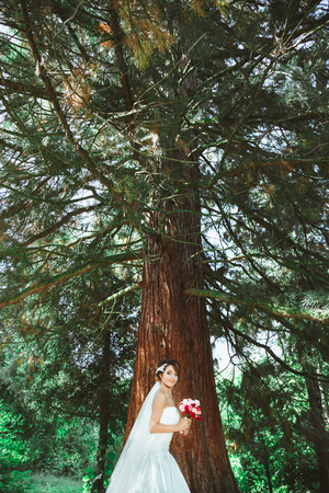 Foto de Wedding photo shooting. Bride standing in pine forest with bouquet. Wearing white dress and veil. Outdoor - Imagen libre de derechos