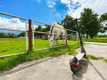 Photo pour Horse in the arena. In the stall is a beautiful white horse. An electric scooter is parked near the horse arena. Animal and electric transport. Past and future are near. Eco friendly mobility concept. - image libre de droit