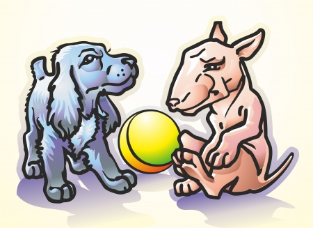 pets spaniel puppies black and piebald bull terrier playing ball