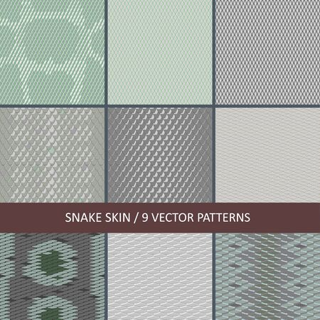Illustration for collection of vector seamless snake skin textures - Royalty Free Image