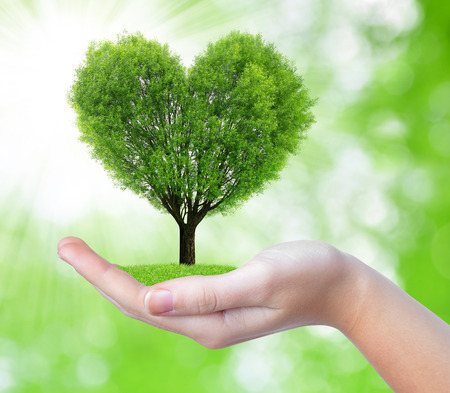 Foto de growing tree in the shape heart in hand on green background - Imagen libre de derechos