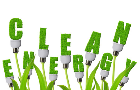 Photo pour Eco light bulbs growing on plant isolated on white background. Clean energy concept. - image libre de droit