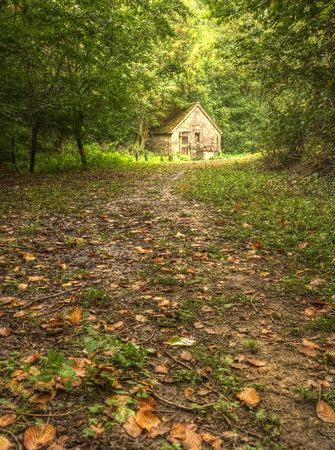 Autumn forest scene with vibrant colours and old stone cabin