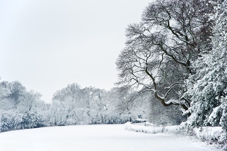 Winter snow landscape in English countryside