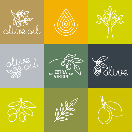 Vector olive oil icons and logo design elements in trendy linear style - mono line illustrations and concepts for packaging of extra virgin olive oil and fresh farm products