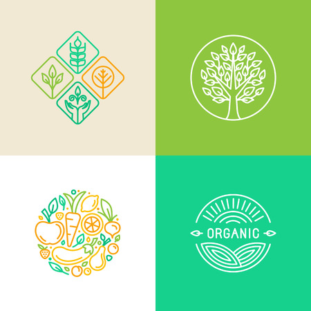 Vector linear logo design template and badges - organic food and farming - green and vegan food conceptsのイラスト素材