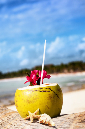 Photo pour Coconut with drinking straw on a palm tree at the sea - image libre de droit