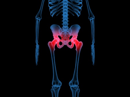 3d illustration of radiography of the hip and femur bones