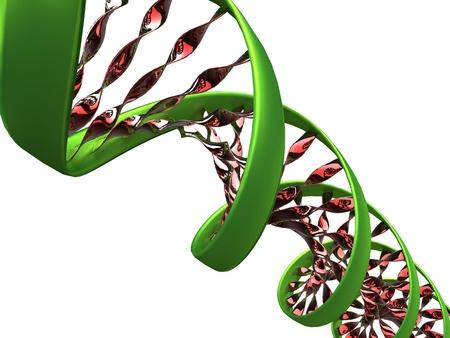 Foto de 3d illustration of a dna molecule on white background - Imagen libre de derechos