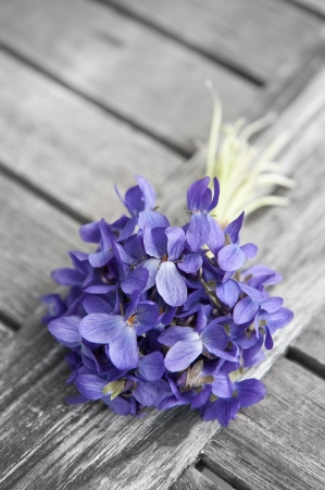 spring bouquet of violets on old wooden table