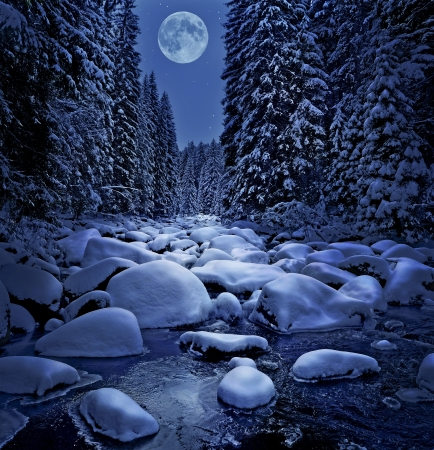 winter night and snow covered river