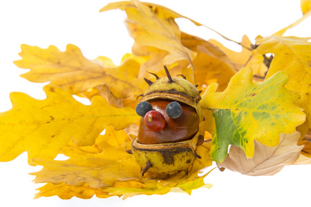toy made from chestnuts and natural materials - autumnal toy
