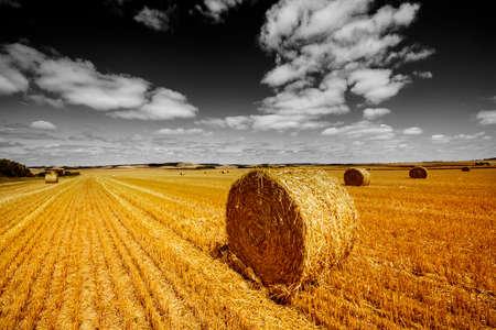 Foto für fields afrer harvest and black and white sky - Lizenzfreies Bild