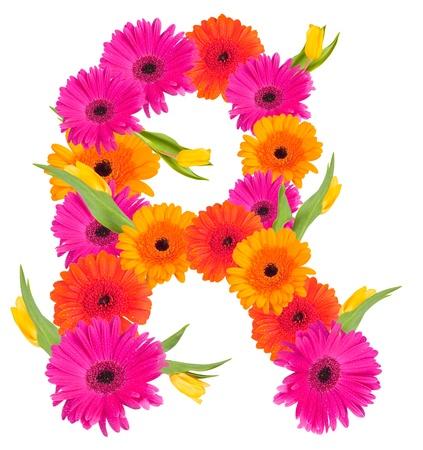 R flower alphabet isolated on white