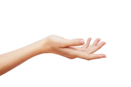 beautiful woman's hand holding blank space isolated. studio photoshoot