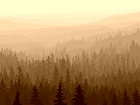 Illustration pour  panorama of wild coniferous forest in morning fog. - image libre de droit