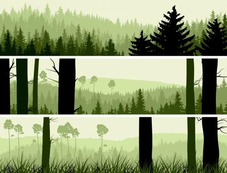 Horizontal abstract banners of hills of coniferous wood in green tone.