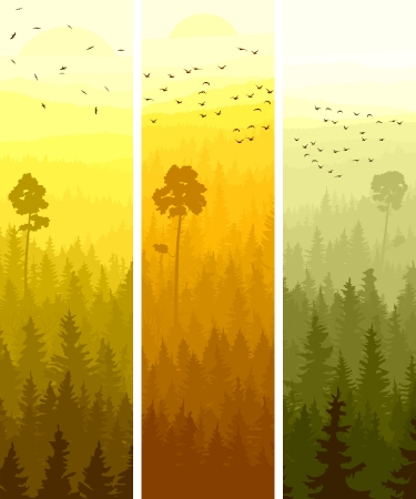 Illustration pour Vertical abstract banners of hills of coniferous wood with folk birds in yellow and orange tone. - image libre de droit
