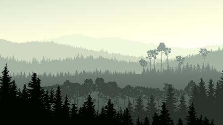 Illustration pour Vector horizontal panorama of wild coniferous forest in green tone. - image libre de droit