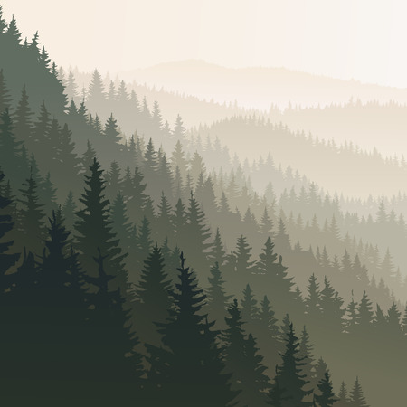 Illustration pour square landscape of wild coniferous forest in morning fog in dark green tone. - image libre de droit