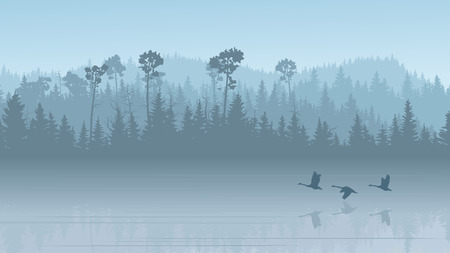 Illustration pour Horizontal illustration morning misty coniferous forest hills with its reflection in lake with swans ( in blue tone). - image libre de droit