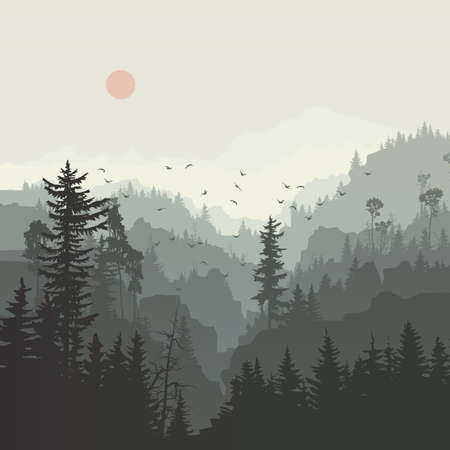 Illustration pour Square illustration of misty coniferous forest hills with canyons and flock of birds. - image libre de droit