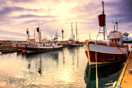 Husavik, Iceland - March 29, 2017: Traditional whale watching boats lying in the harbor of Husavik in golden evening light at sunset , northern coast of Iceland