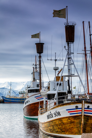 Husavik, Iceland - March 29, 2017: Traditional whale watching boats lying in the harbor of Husavik , northern coast of Iceland