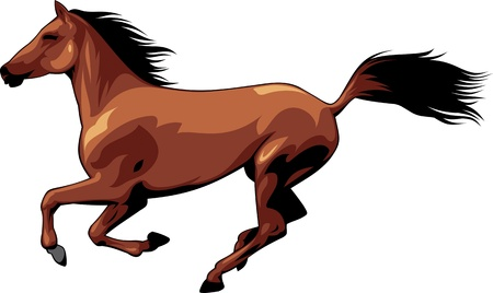 The illustration shows a beautiful horse .She runs, she flies mane and tail. Illustration isolated on white background.