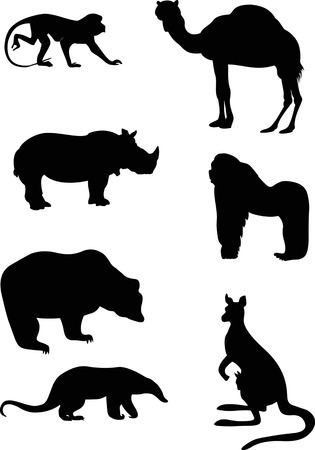 Illustration pour  The illustration shows animals, some species of wild mammals  Illustration done in the style of contour drawing, isolated on white background, in separate layers  - image libre de droit