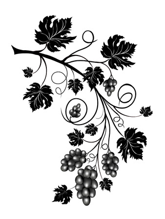 Grapevine with scrolls and leaves