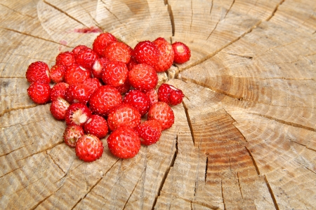 Wild strawberries are on stup seems very tasty