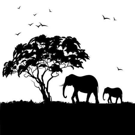 Illustration pour Black silhouette of african trees and elephants. Background with african landscape. - image libre de droit