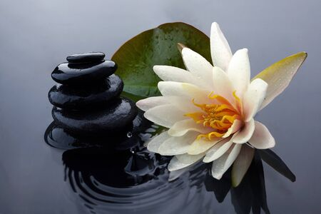Photo pour Spa still life with water lily and zen stone in a serenity pool - image libre de droit