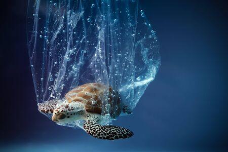 Foto de Turtle in plastic bag in ocean. world oceans day concept. Environment concept. Ecology concept. Earth planet. Sea underwater background. Save planet. - Imagen libre de derechos