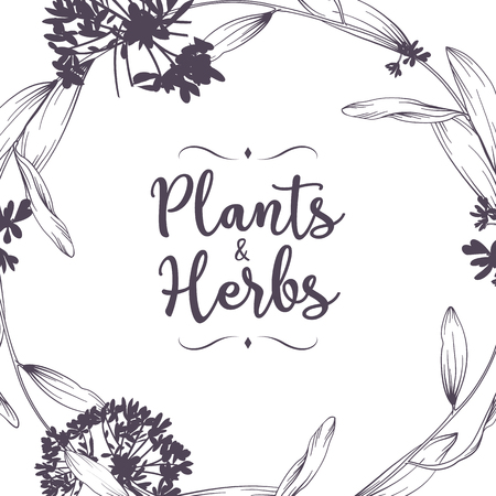 Illustration for Beautiful floral background. Element for design or invitation card - Royalty Free Image