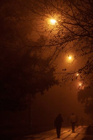 Photo for People walking at night in the fog - Royalty Free Image