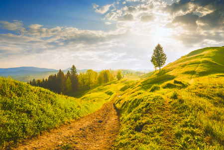 Early morning in a Carpathian valley with beautiful light of sunrise. Spring time