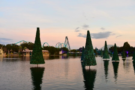 Orlando, Florida. November 19, 2018 Christmas trees reflected in the lake and colorful rollercoaster on sunset background at Seaworld Marine Theme Park.