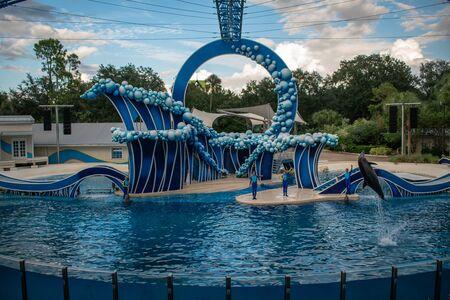 Orlando, Florida. November 06, 2019. Dolphin jumping at Dolphin Days Show at Seaworld at Seaworld 3