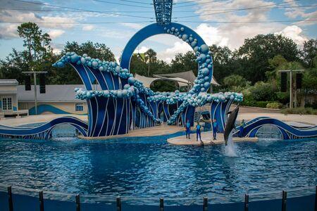 Orlando, Florida. November 06, 2019. Dolphin jumping at Dolphin Days Show at Seaworld at Seaworld (7)